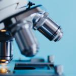 SLA: individuato un bersaglio farmacologico associato alla perdita di mielina